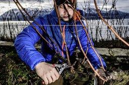 Une réussite fribourgeoise en Lavaux