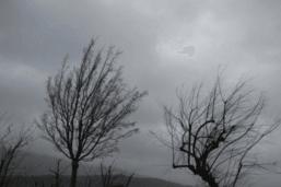 Des rafales à près de 150 km/h au Moléson