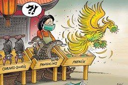 Alerte: le coronavirus ressurgit sur un marché de Pékin