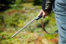 Ouverture de la chasse le 1e septembre