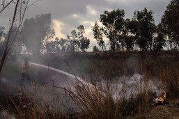 Vague d'incendies en Israël: des milliers d'évacués