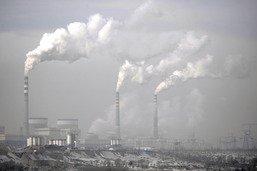 """La croissance a un """"coût dévastateur"""" pour la Nature (rapport)"""